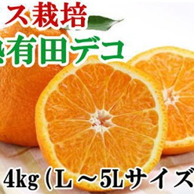 【ハウス栽培】完熟有田デコ(不知火)約4kg(L~5Lサイズ混合)(L~5Lサイズ混合)