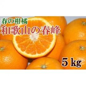 和歌山で生まれた春にぴったりの柑橘「春峰」約5kg
