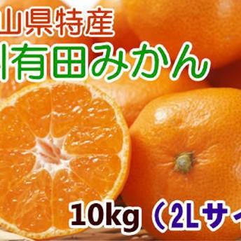 [厳選]紀州有田みかん 10kg(2Lサイズ・赤秀)(2Lサイズ)