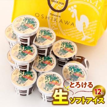 『押川春月堂本店』とろける生ソフトアイスクリーム(10個セット)