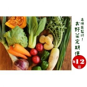 I-1.【年12回】土壌医監修!産直!旬の季節のお野菜定期便(8~10品)