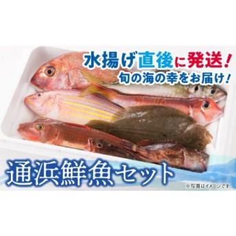 『日向灘海の幸』- 通浜鮮魚セット -(セット)