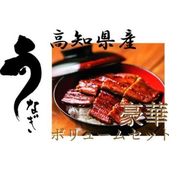 高知県産うなぎ蒲焼 長焼5尾+白焼2尾+お吸物付き/F