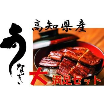 高知県産うなぎ三昧 長焼2尾+ハーフ4袋+きざみ3袋+白焼ハーフ2袋+お吸物付き