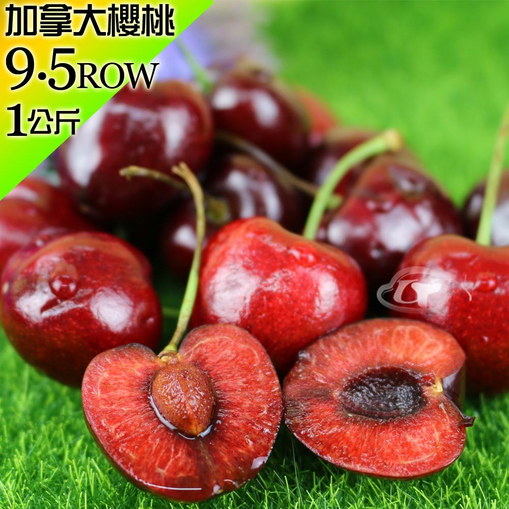 (預購)【果之家】卑詩省純淨雪水空運加拿大櫻桃禮盒9.5ROWx1公斤