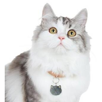 まんまる猫の迷子札 白猫