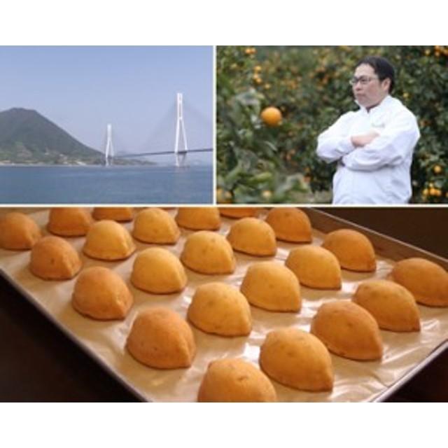 島ごころ レモンケーキ 10個入り