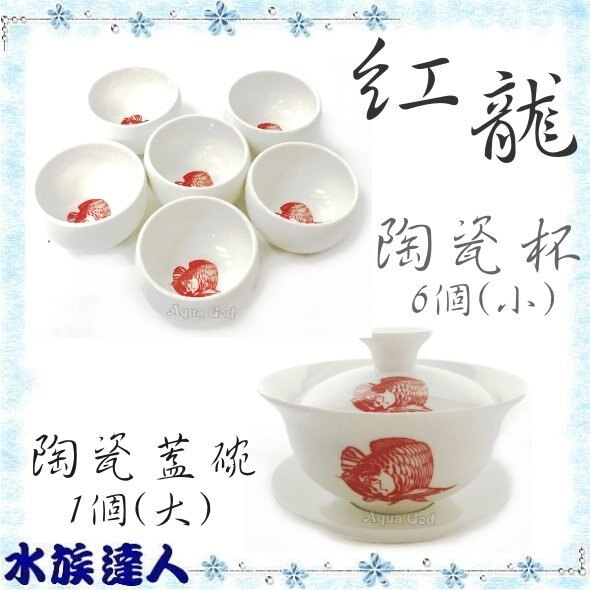【水族達人】《紅龍茶杯組 陶瓷大蓋碗1個+6個陶瓷小茶杯》玻璃杯 茶具 泡茶杯 茶器 陶瓷工藝
