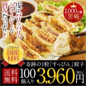 送料無料 冷凍 ぎょうざ ギフト ギョウザ すっぴん餃子100個 中華 訳あり グルメ 取り寄せ 大阪