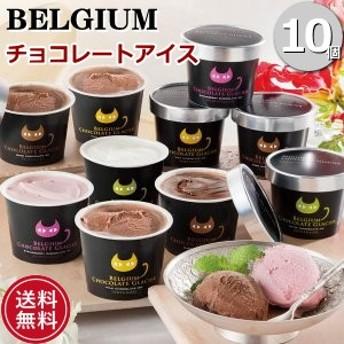 イーペルの猫祭り ベルギーチョコレートグラシエ【10個入】送料無料 アイスクリーム ギフト アイス ギフト アイスクリーム 送料無料 ギフ