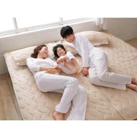 セミダブル(家族の寝具のニオイ対策に!フレッシュ&ドライ消臭除湿敷きパッド 敷きパッド)ブルー