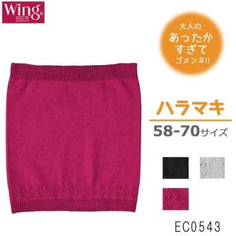 ワコール wacoal ウイング Wing あったか ニットインナー 腹巻 58-70サイズ 日本製 EC0543