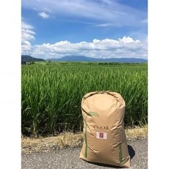 令和元年産『さがびより』玄米30kg