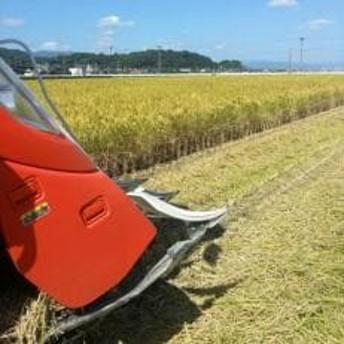 令和元年産新米 江頭農園のがばいうまか エガシライス(さがびより) 玄米15kg(5kg×3袋)