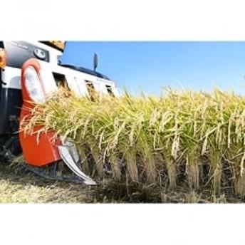 江頭農園のがばい うまかエガシライス【令和元年産新米 夢しずく】玄米30kg
