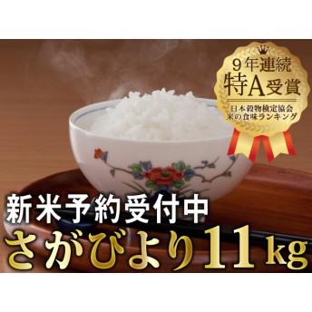 令和元年産 新米さがびより(5.5Lx2袋)【先行予約】(2袋)