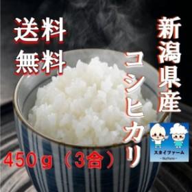 ポイント消化 送料無料 450g 食品 米 お試し 新潟県産コシヒカリ450g 1kg未満 こしひかり