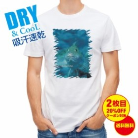 Tシャツ 熱帯魚 No.9 クジメ 釣り 魚 ルアー 送料無料 メンズ ロゴ 文字 春 夏 秋 インナー 大きいサイズ 洗濯