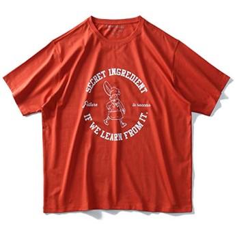 DANIEL DODD オーガニック プリント 半袖 Tシャツ SECRET INGREDIENT azt-190241 大きいサイズ メンズ【400.オレンジ系-4L】