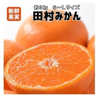 有田みかん最高峰「田村みかん」約3kg S~L【紀州グルメ市場】