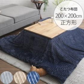 MOLDE モルデ こたつカバー&ヌードセット 200×200cm