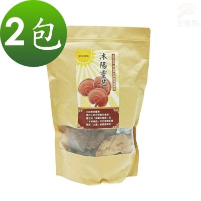 金德恩 台灣製造 2包SGS認證沐陽養生食品松杉破壁靈芝子實體 整朵靈芝1包300g