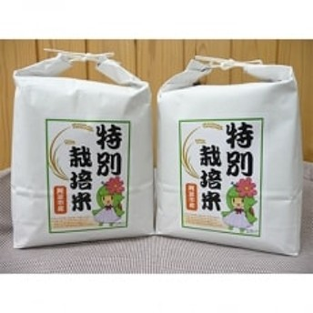 令和元年産阿波市の特別栽培米セット
