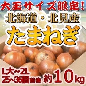 【送料無料】北海道 北見F1 たまねぎ 秀品 約10kg 大玉L~LLサイズ 玉葱