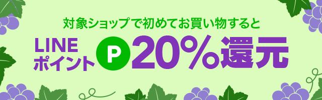 新規20%ポイント
