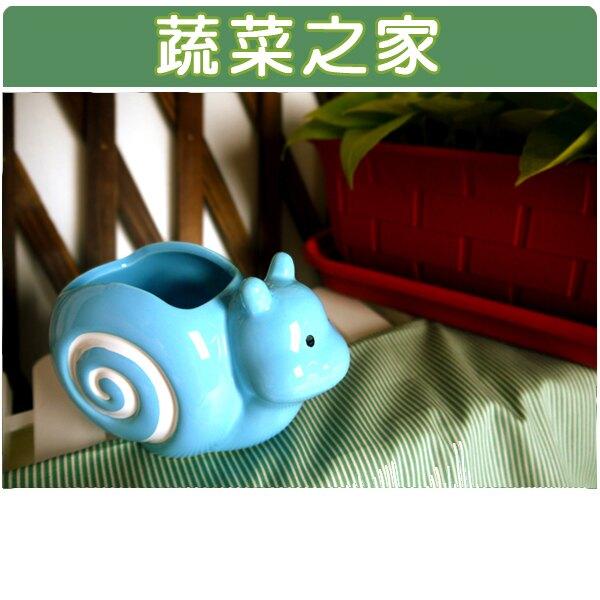 【蔬菜之家004-G03BL】陶瓷蝸牛瑞士捲-藍色