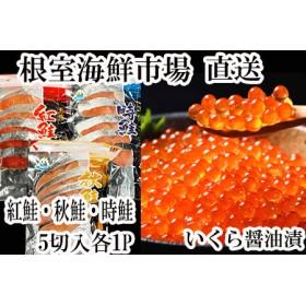 紅鮭・時鮭・秋鮭切身各5切、いくら醤油漬け80g
