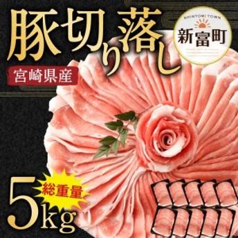 <宮崎県産豚肉5㎏切落し>※35日以内に出荷【B193-05】