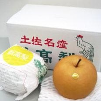 【大玉果物の1つ】新高梨(約4kg)