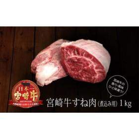 <宮崎牛>牛スネ(煮込み用) 合計1kg(500g×2パック)【B228】