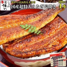 国産 うなぎ 蒲焼き 超特大サイズ 200g 4本セット ウナギ 鰻 送料無料
