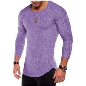 GodeyesW メンズプラスサイズサイムソリッドクルーネックTシャツトップティー Purple 2XL