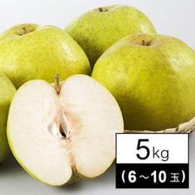 【予約商品】10/1~順次出荷【5kg(6-10玉)】 [秀品]山形県産かおり梨