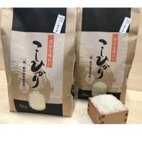 令和元年産 近江米【コシヒカリ10kg】環境こだわり米