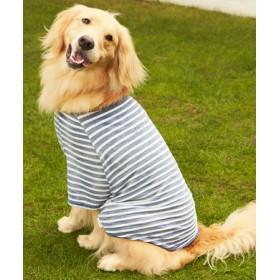 Naughty Dog 刺繍ロゴインディゴボーダーTシャツ(レトリバー対応サイズ) ドッグウエア 淡色