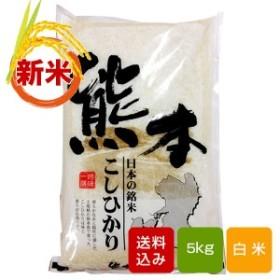 新米 熊本コシヒカリ 5kg
