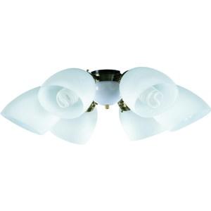 【大巨光】吊扇燈具(WT-416)