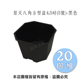 景天八角方型盆4.5吋(5號)-黑色 20個/組