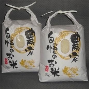 【令和元年産】「ほたる舞う三根川の米」なつほのか 白米(5kg×2)【長崎県対馬産】