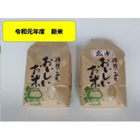 (令和元年度産新米予約)旧笹神村産コシヒカリ白米2kg+玄米2kg