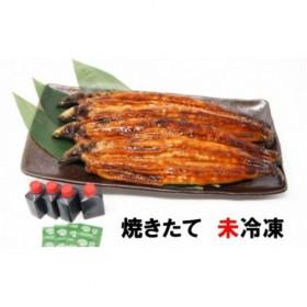 B115◇国産活うなぎの蒲焼き(4尾)