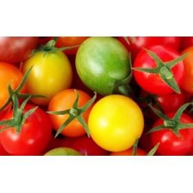 トリアンジュトマト(ミニ)5色のミニトマトのジュエリーボックス