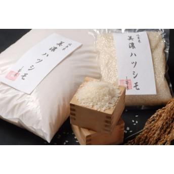 美濃ハツシモ 1等米(2㎏×2袋)