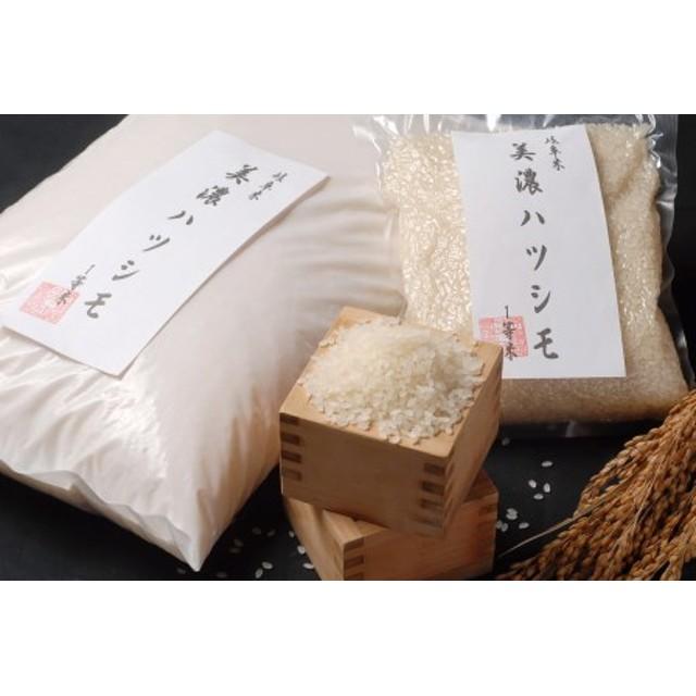 美濃ハツシモ 1等米4㎏(2㎏×2袋)