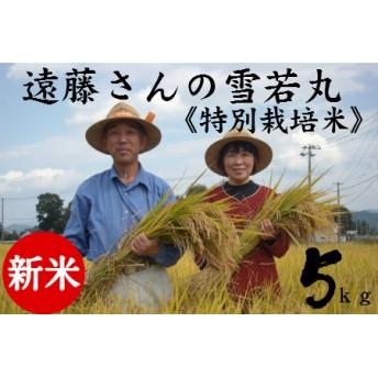 【特別栽培米】遠藤さんの「雪若丸」5kg