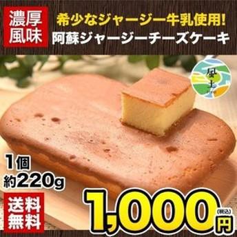チーズケーキ 熊本 阿蘇 希少 ジャージー 牛乳 1個 濃厚風味 スイーツ 送料無料 3-7営業日以内に出荷(土日祝日除く) 濃厚チーズが美味し